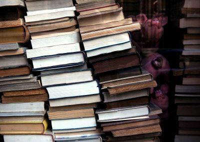 poppelstykket12_books